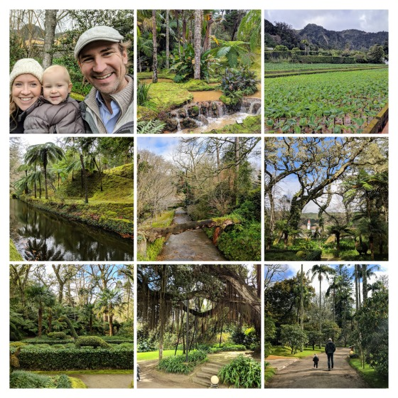 IMG_20180203_134122-COLLAGE